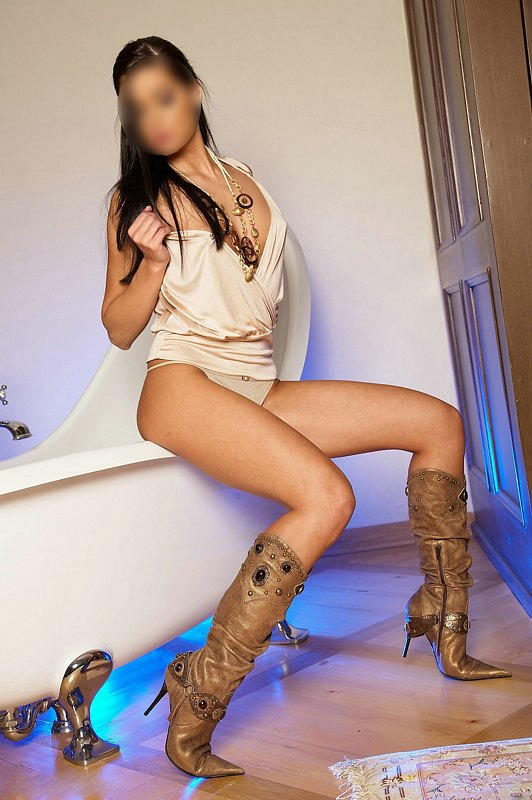 erotic massage utrecht holland escort service